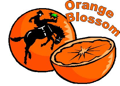 Orange bowl essay contest